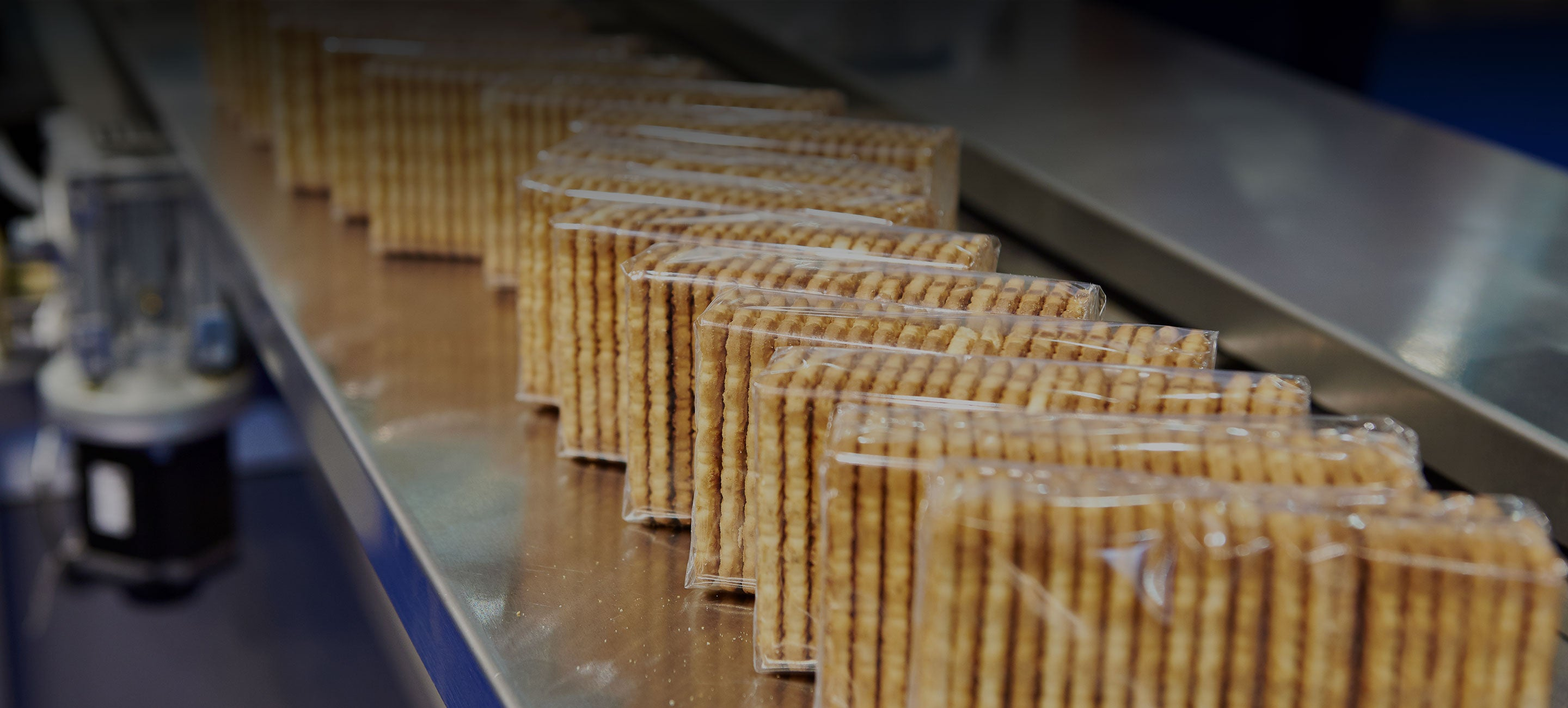 Food and Beverage - Packing Manufacturing Platform - Crackers